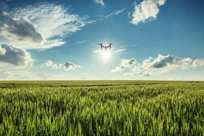 drone parrot d'occasion