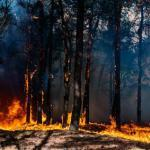 Drone Tech Company Flight Evolved is Preventing Californian Wildfires with Lasers